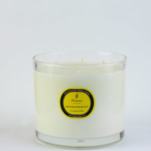 lemongrass and mint 4 wick candle